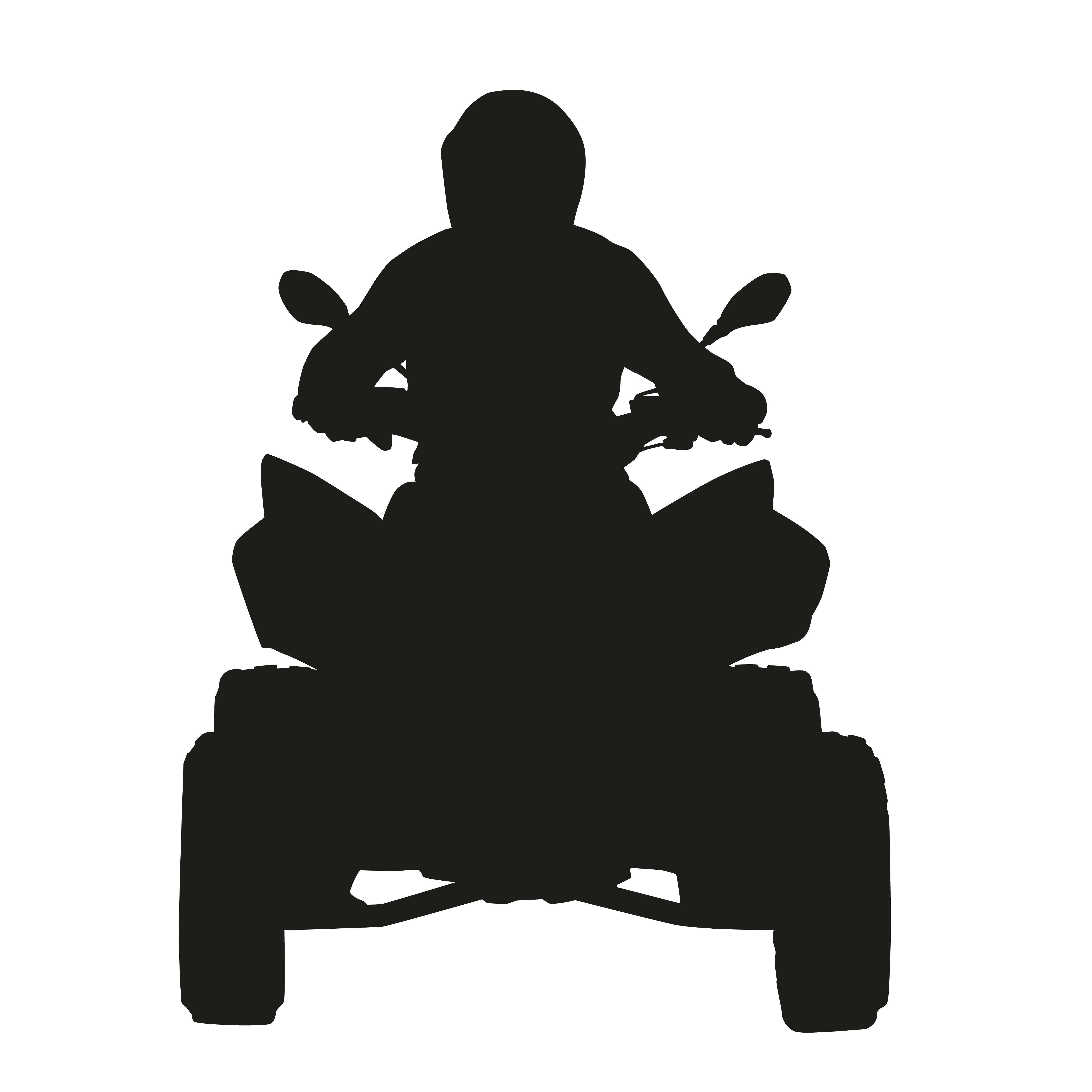 ATV Rider, ATV, all-terrain vehicle riding