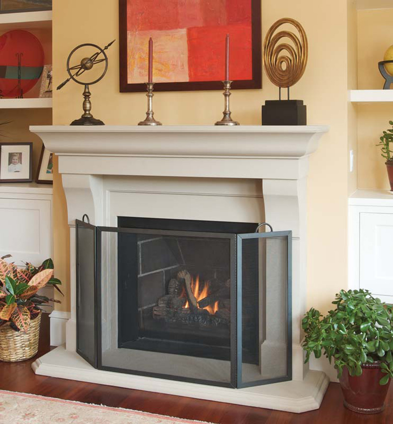 Baby Fireplace Gate Part - 21: ... Gas Fireplace With Screen